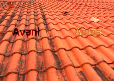 démoussage toiture 49