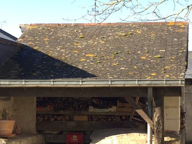 Avant démoussage toiture